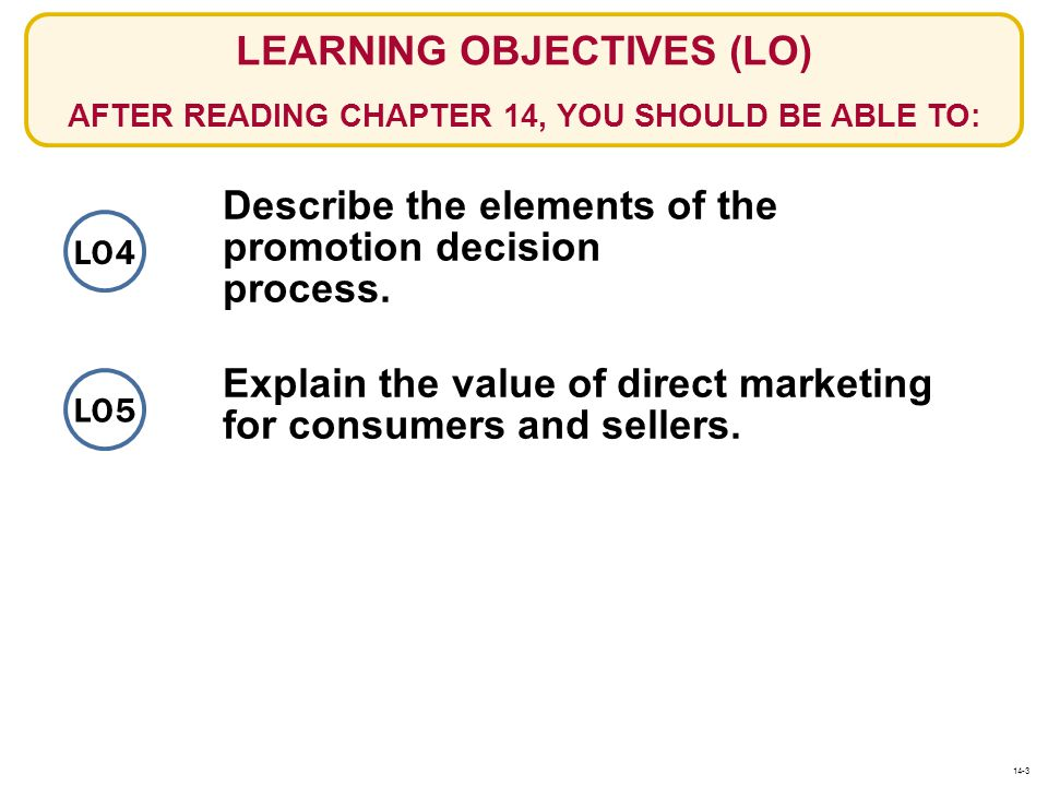Describe the elements of the promotion decision process.
