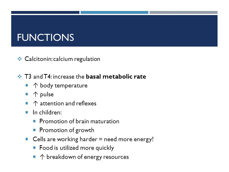 Functions Calcitonin: calcium regulation