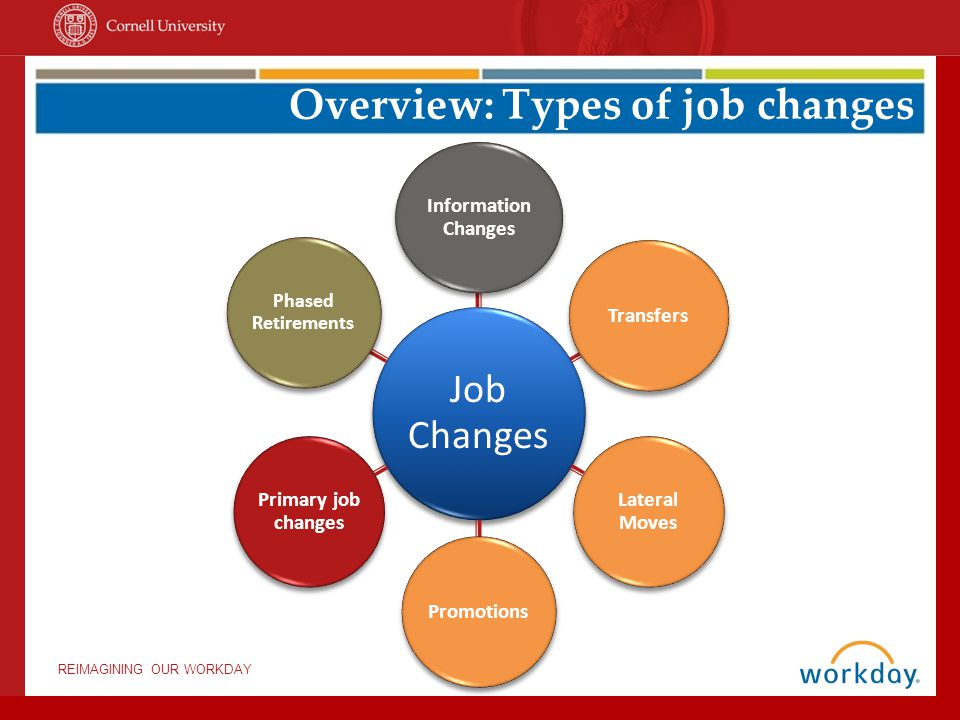 Overview: Types of job changes