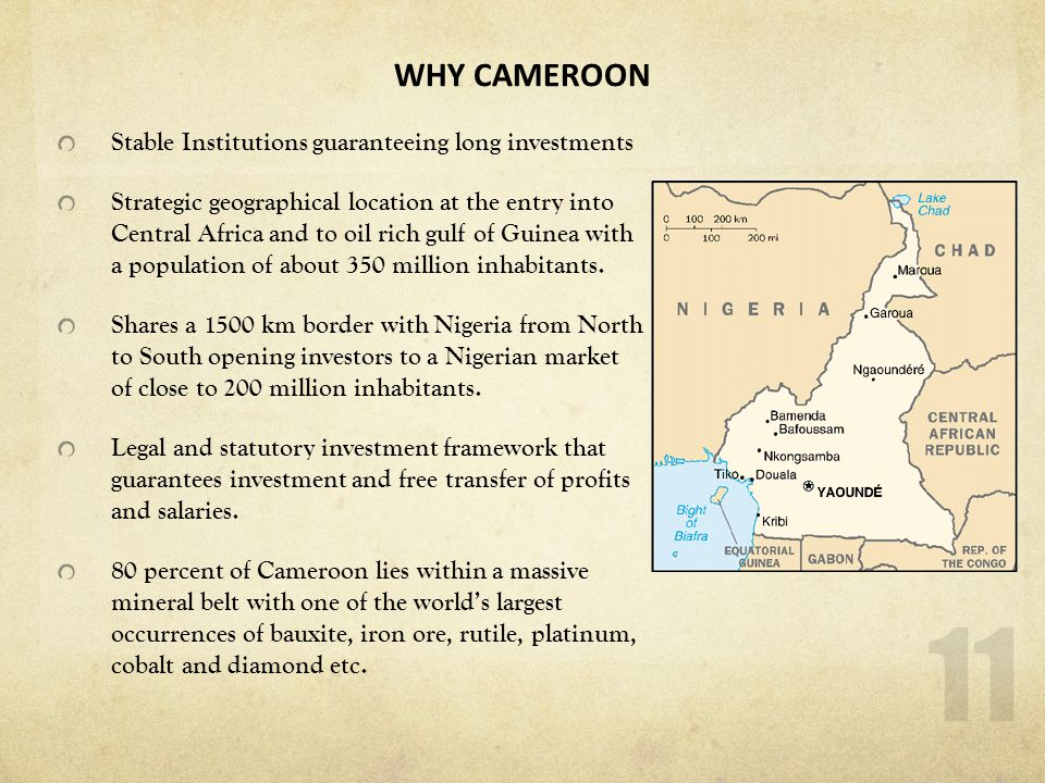 WHY CAMEROON Stable Institutions guaranteeing long investments