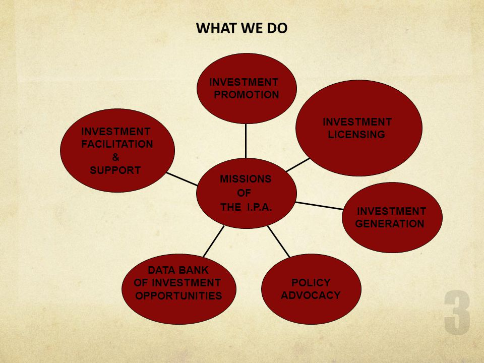 WHAT WE DO INVESTMENT PROMOTION INVESTMENT LICENSING