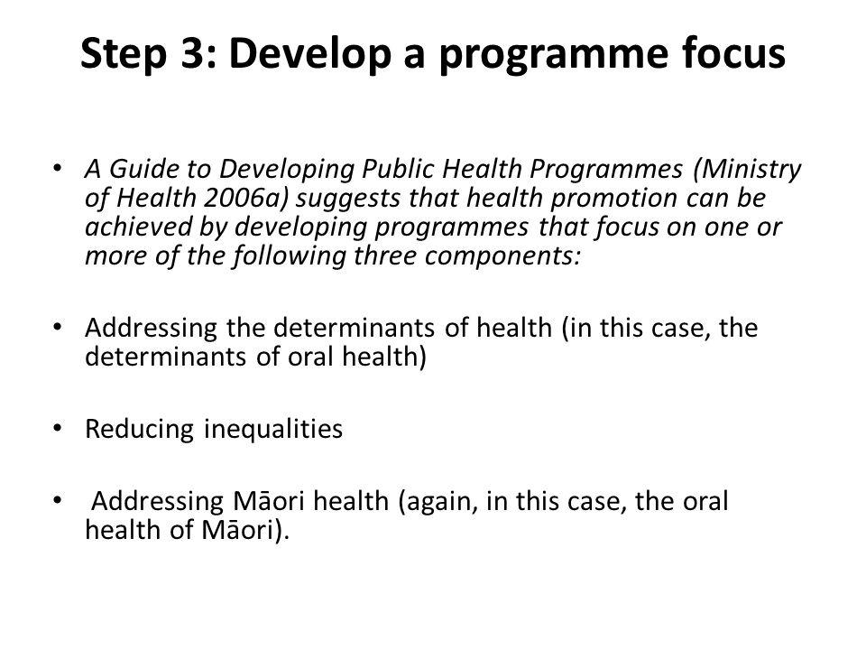 Step 3: Develop a programme focus