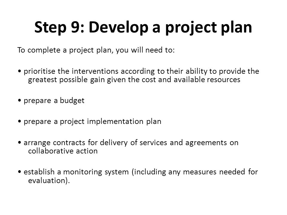Step 9: Develop a project plan