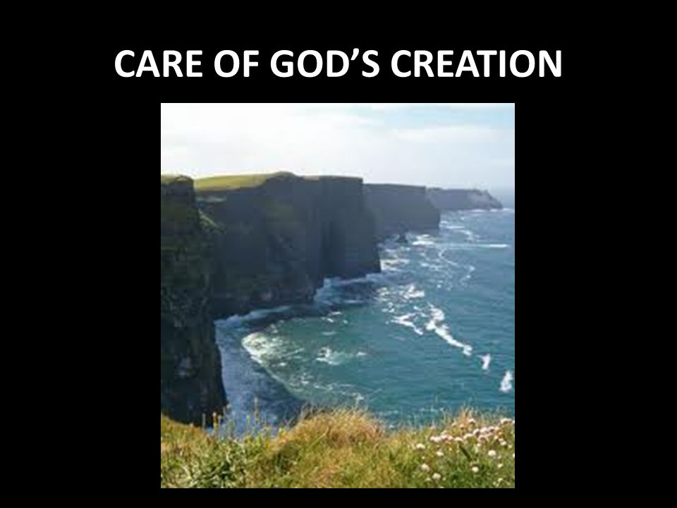 CARE OF GOD'S CREATION