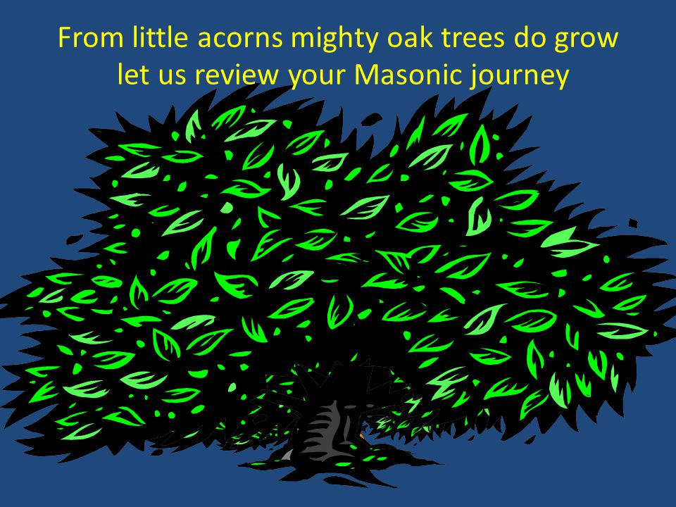 From little acorns mighty oak trees do grow
