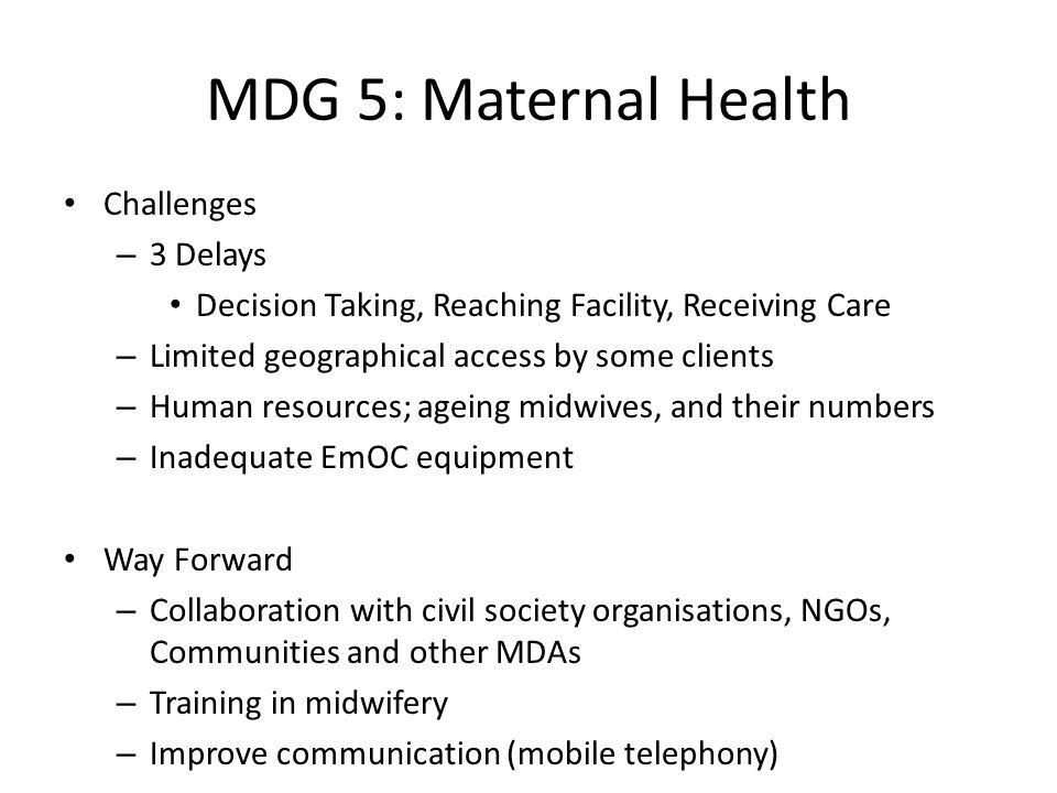 MDG 5: Maternal Health Challenges 3 Delays