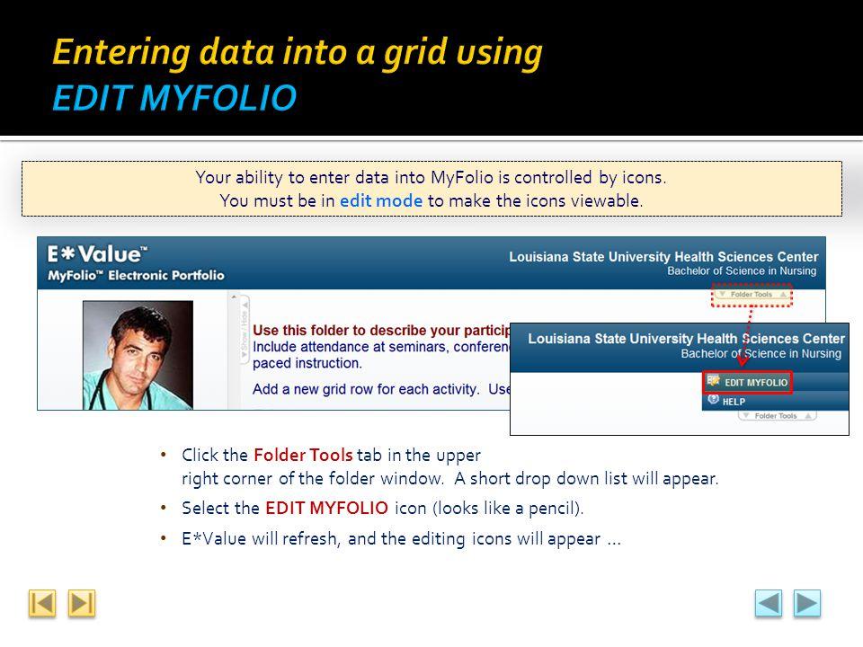 Entering data into a grid using EDIT MYFOLIO