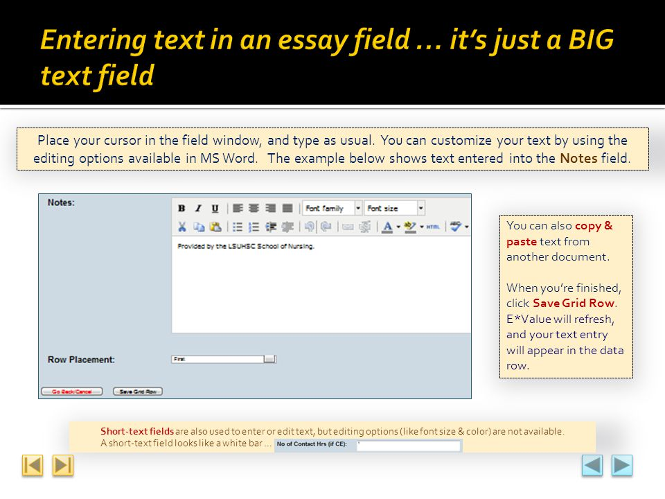 Entering text in an essay field … it's just a BIG text field