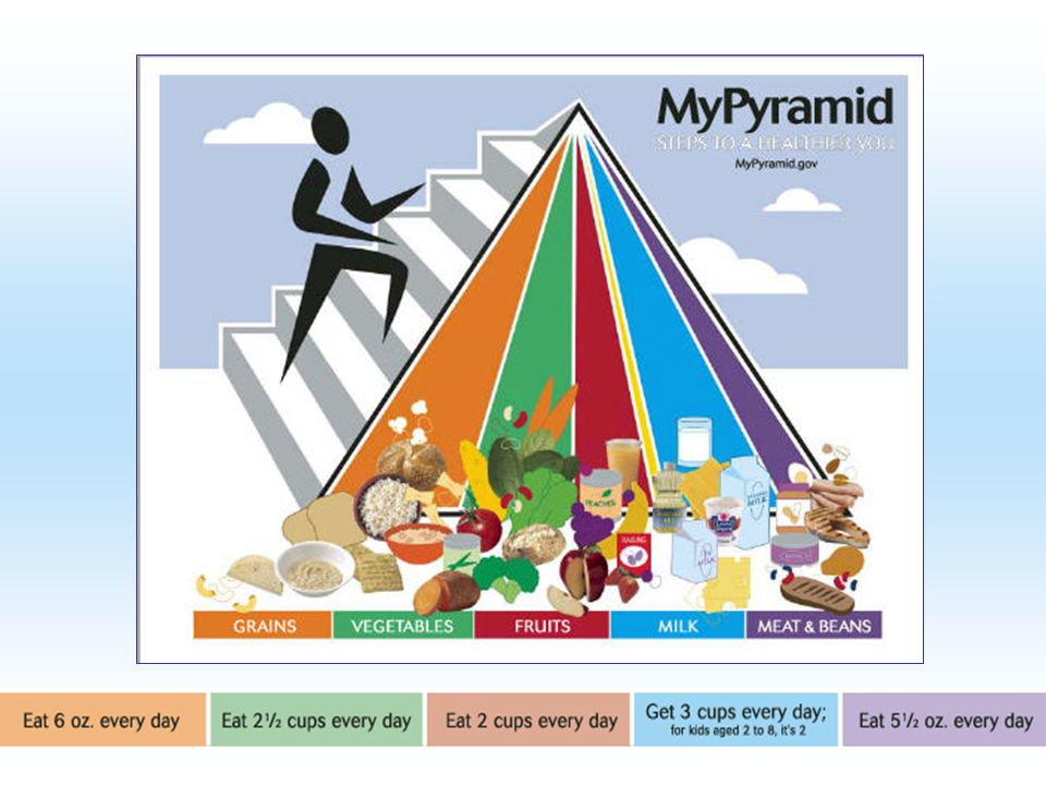 There is a new Food Pyramid that that replaces the traditional health food pyramid.