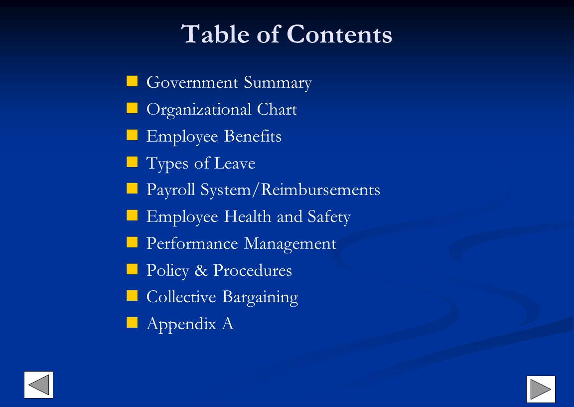 Table of Contents Government Summary Organizational Chart