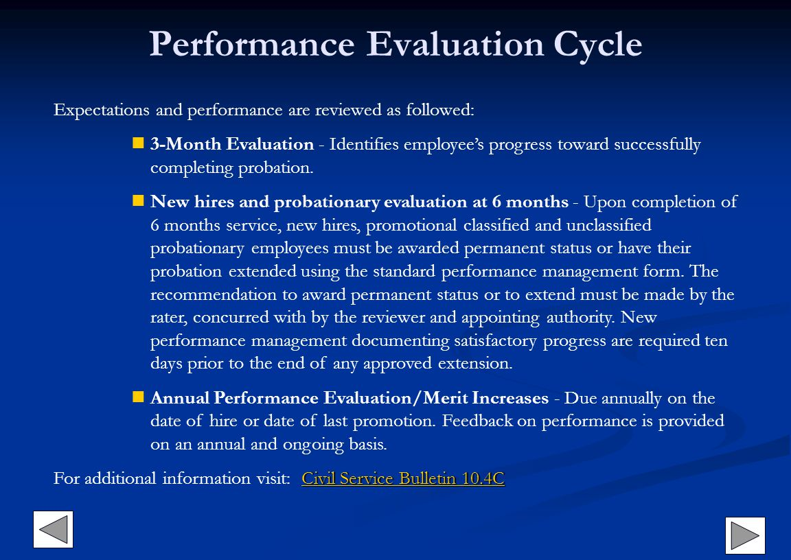 Performance Evaluation Cycle