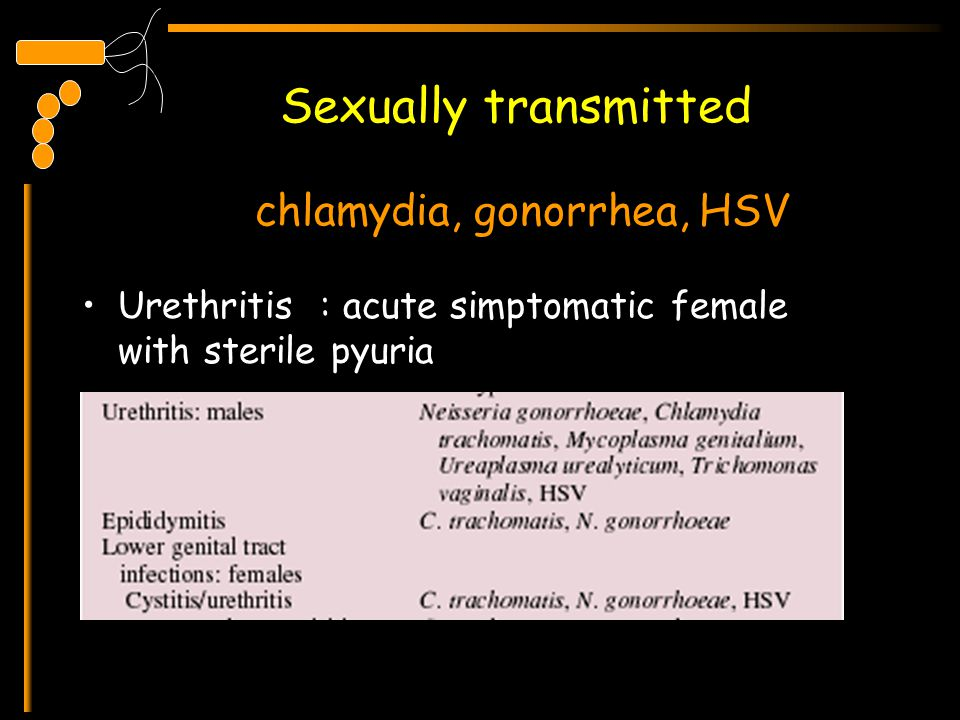 Sexually transmitted chlamydia, gonorrhea, HSV
