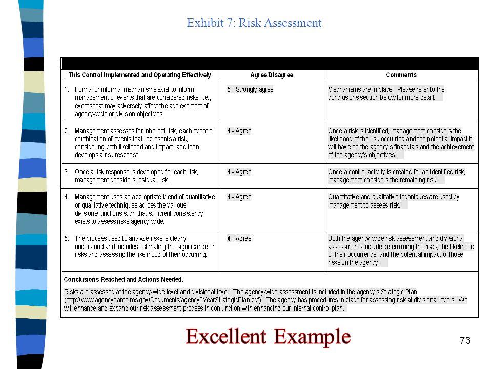 Exhibit 7: Risk Assessment