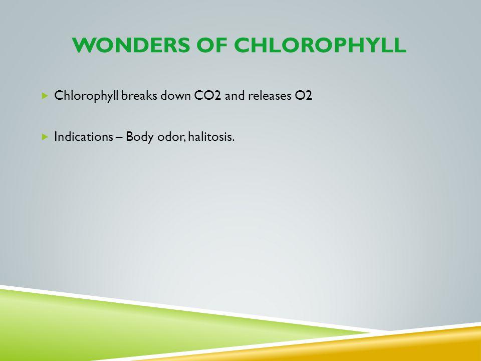 WONDERS of chlorophyll