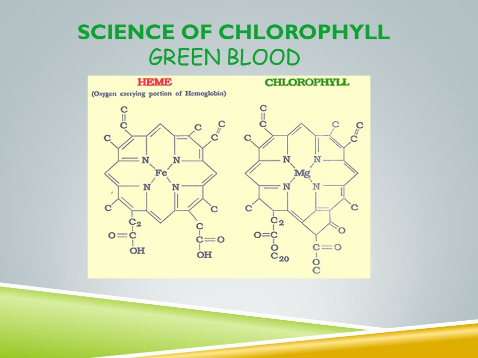Science of Chlorophyll GREEN BLOOD