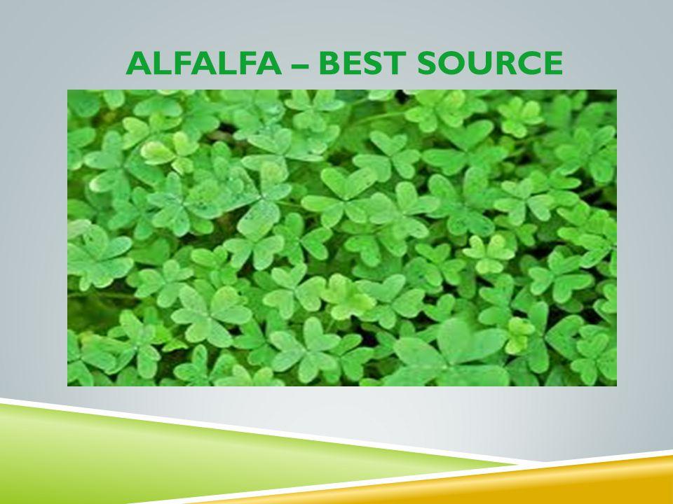 ALFalfa – best source