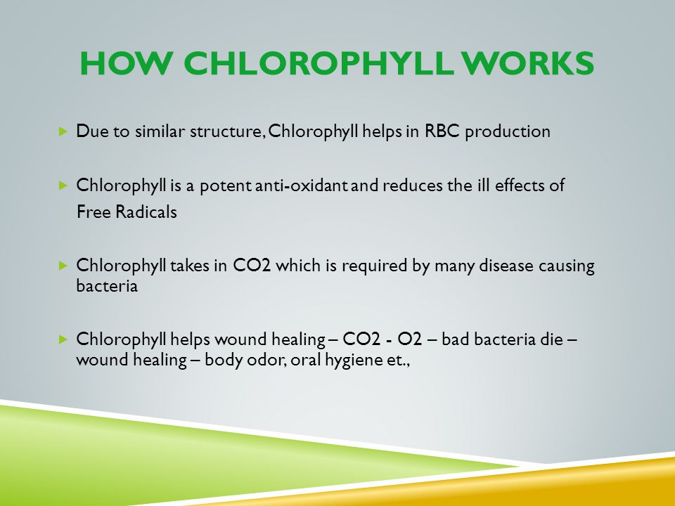 How chlorophyll works Due to similar structure, Chlorophyll helps in RBC production.
