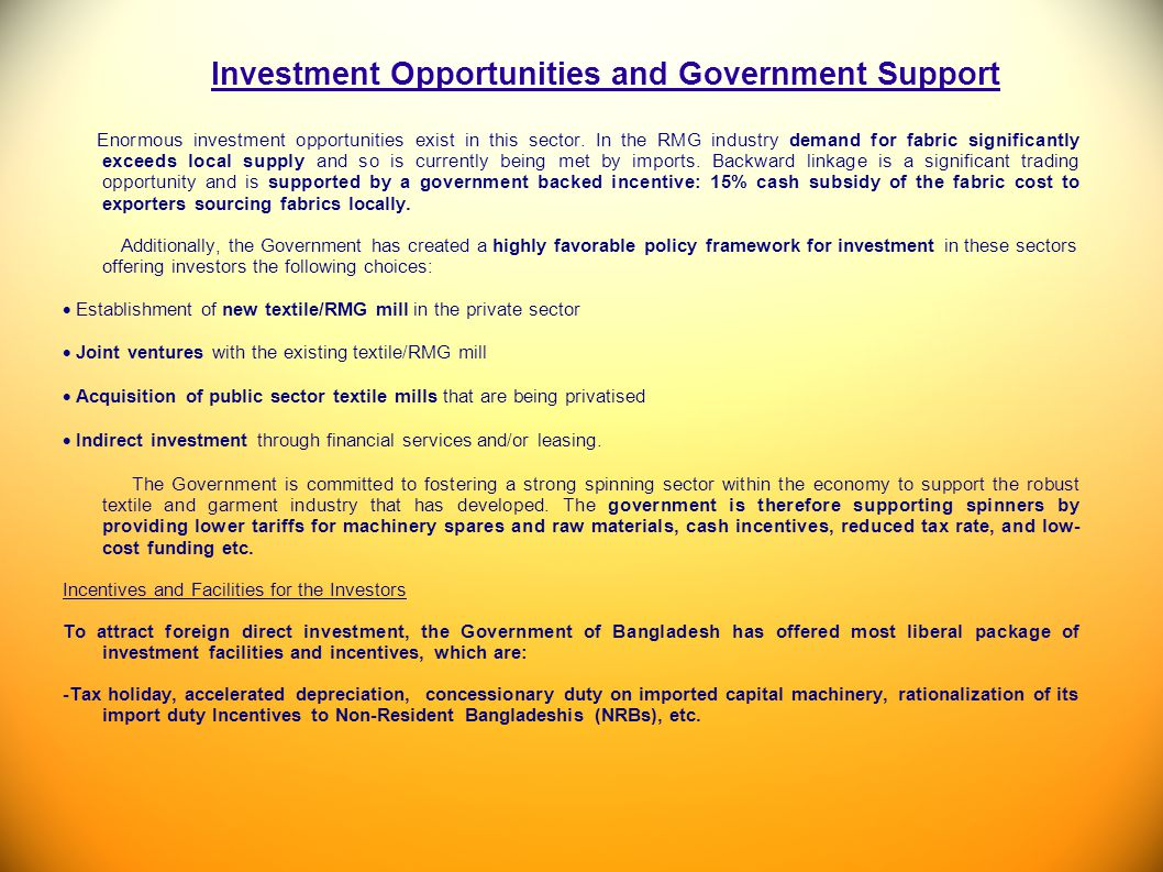 Investment Opportunities and Government Support