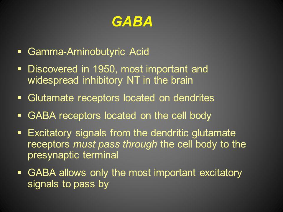 GABA Gamma-Aminobutyric Acid