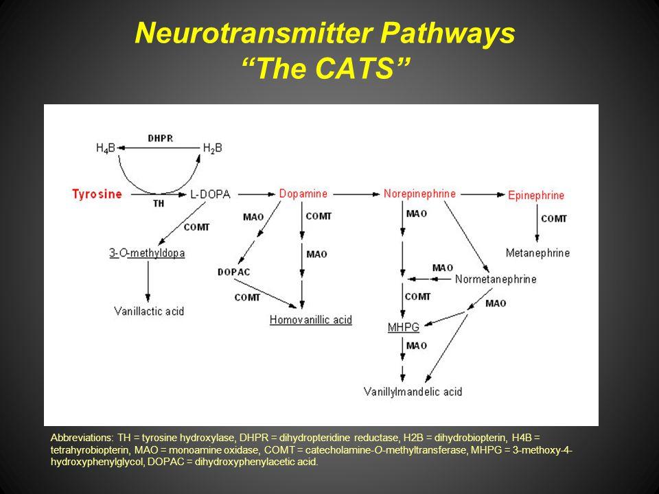 Neurotransmitter Pathways The CATS