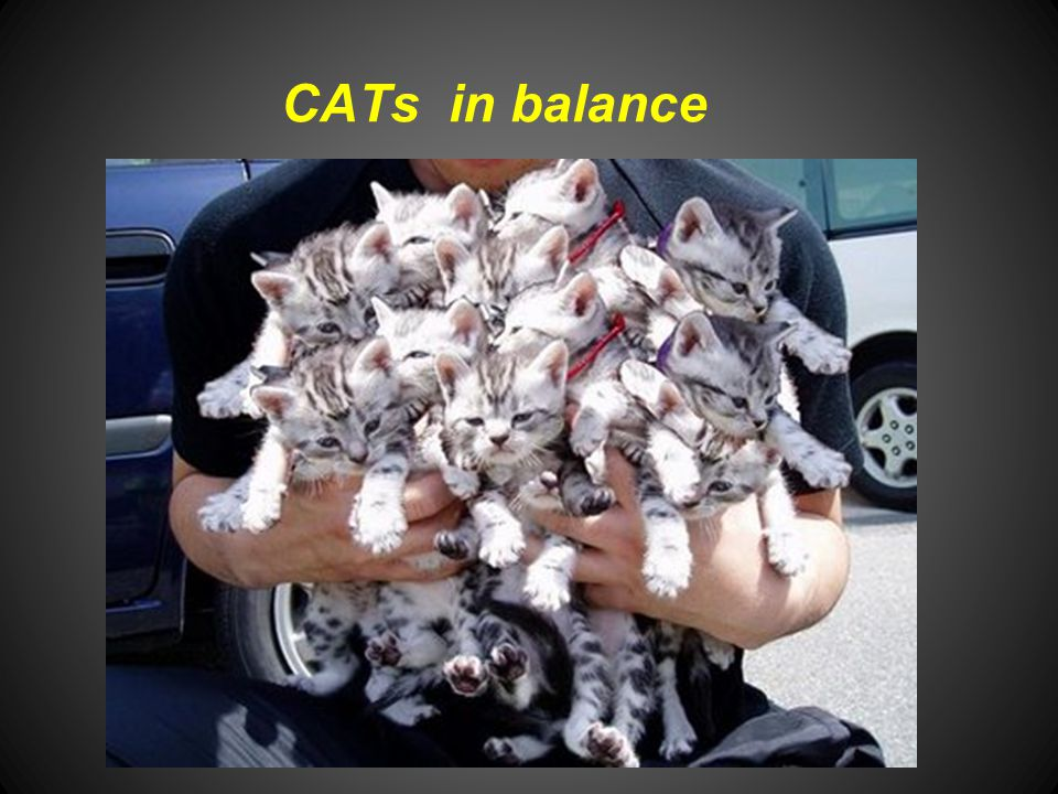 CATs in balance