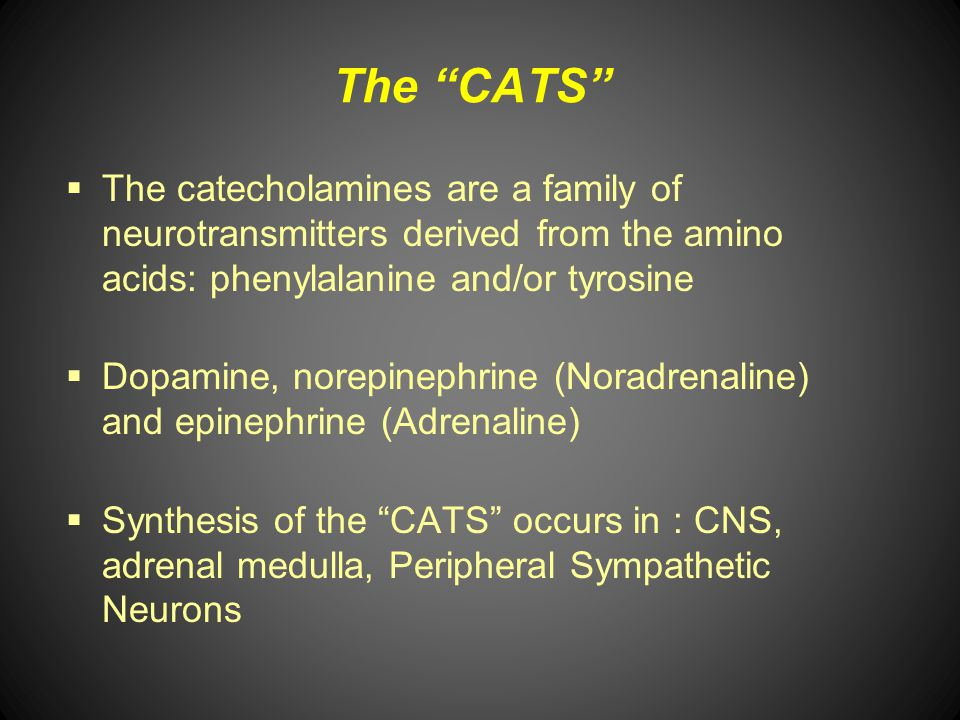 The CATS The catecholamines are a family of neurotransmitters derived from the amino acids: phenylalanine and/or tyrosine.