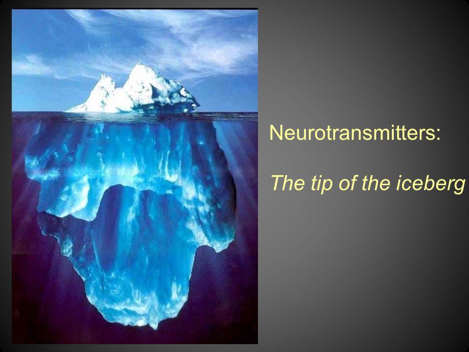 Neurotransmitters: The tip of the iceberg