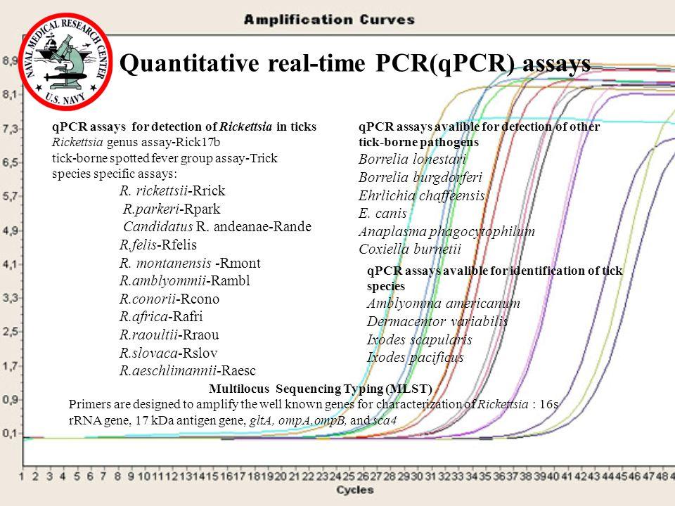 Quantitative real-time PCR(qPCR) assays