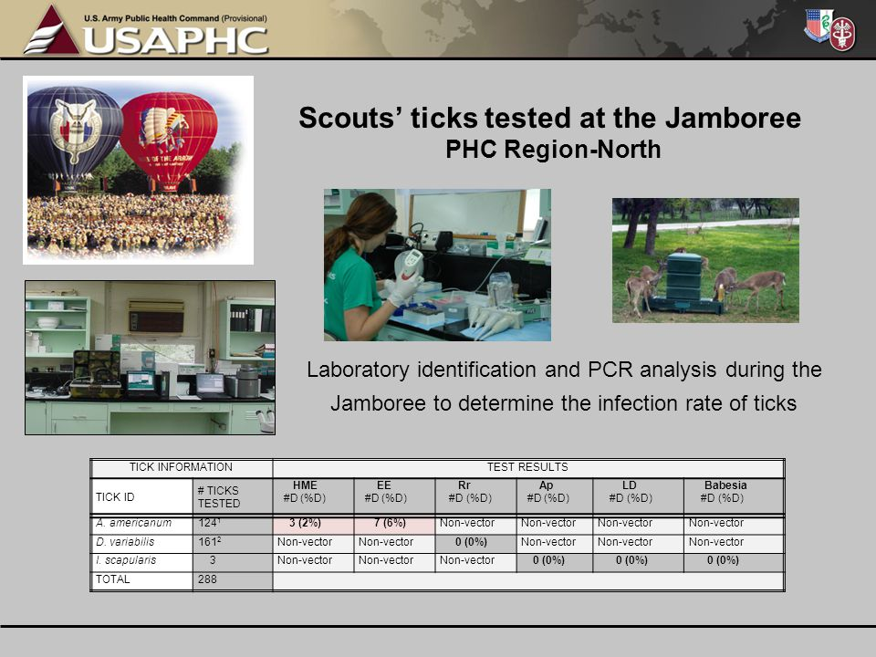 Scouts' ticks tested at the Jamboree