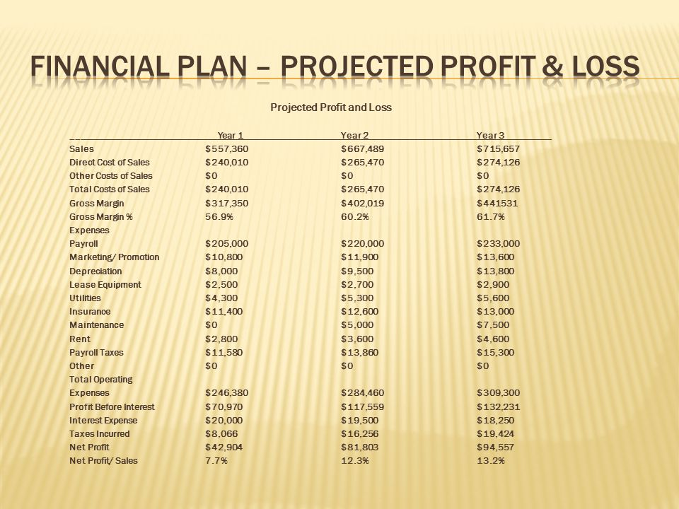 Financial Plan – Projected Profit & Loss