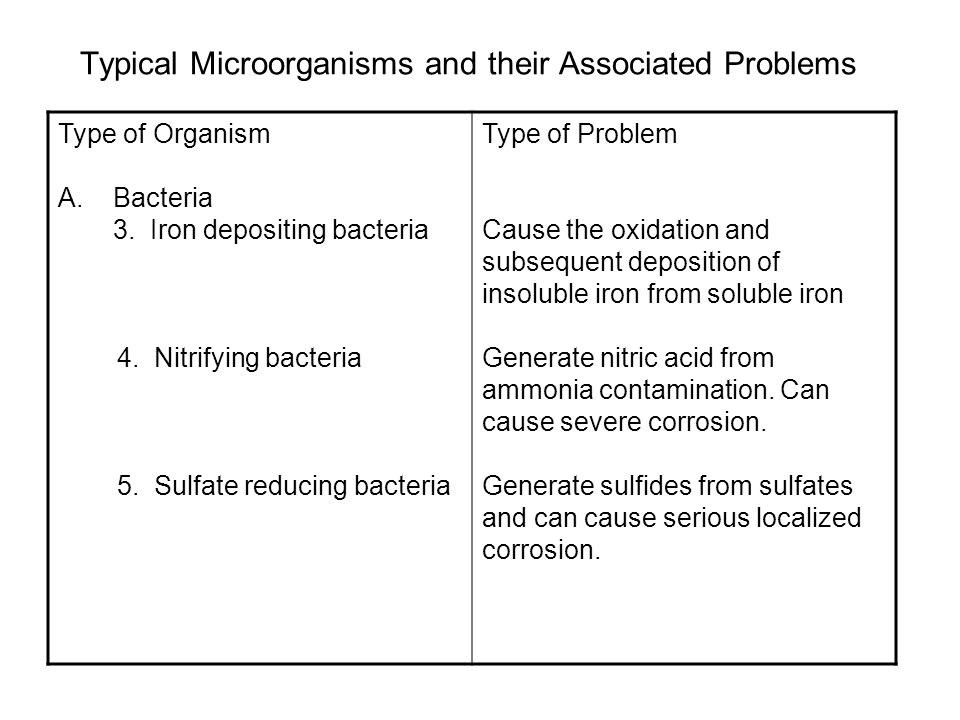Typical Microorganisms and their Associated Problems