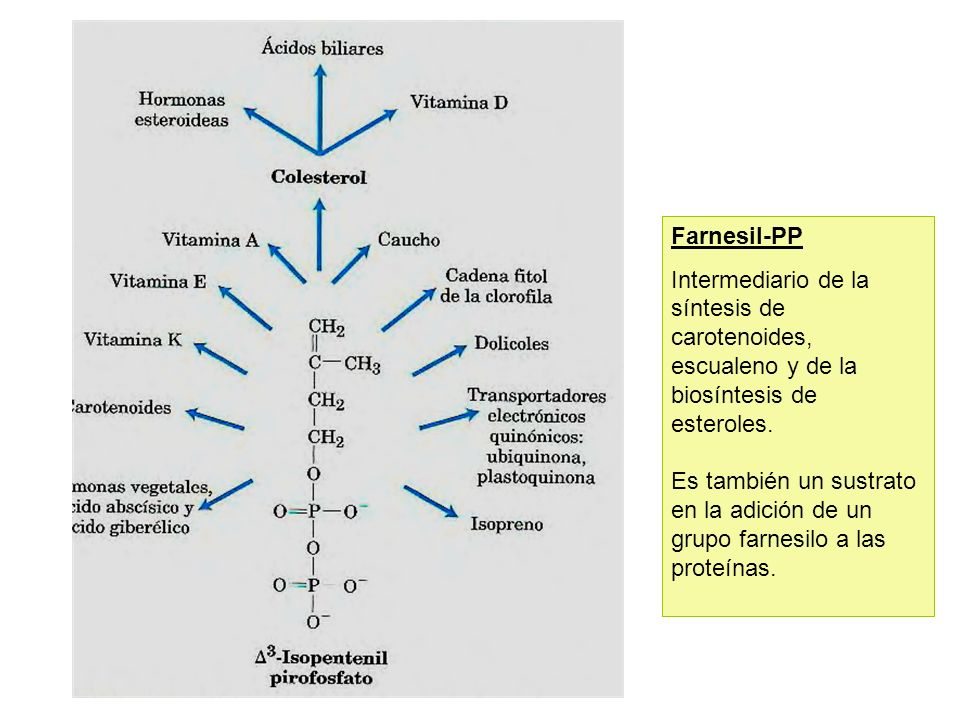 Farnesil-PP