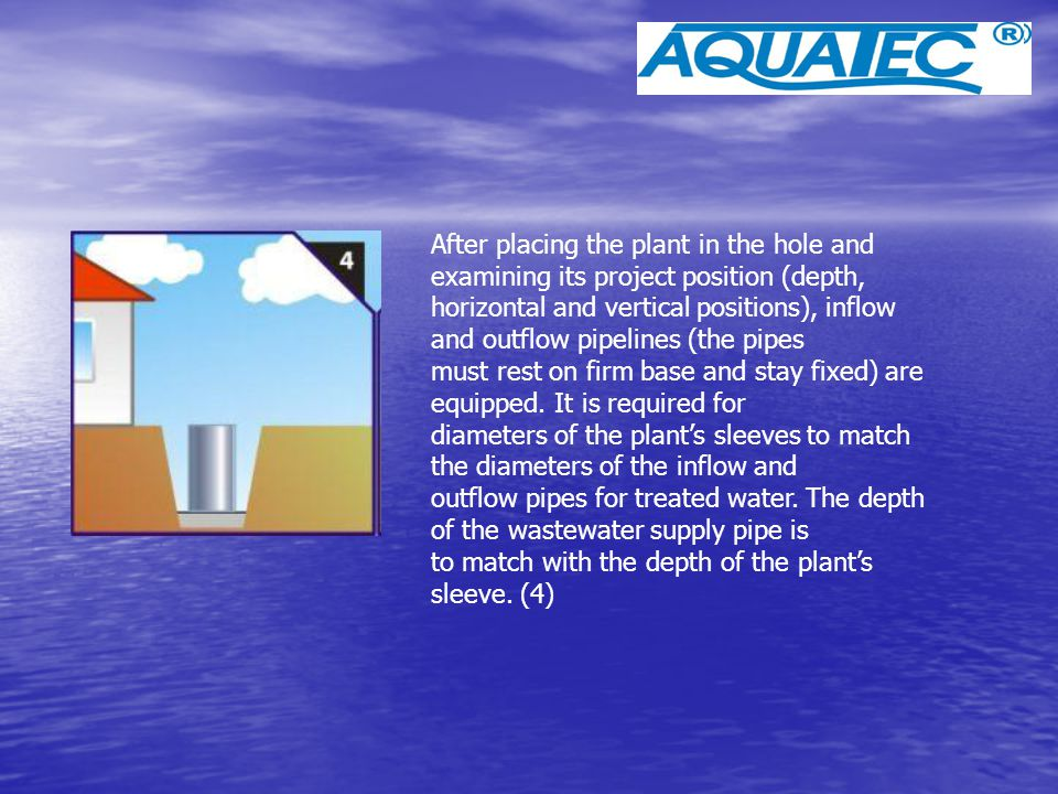 After placing the plant in the hole and examining its project position (depth,