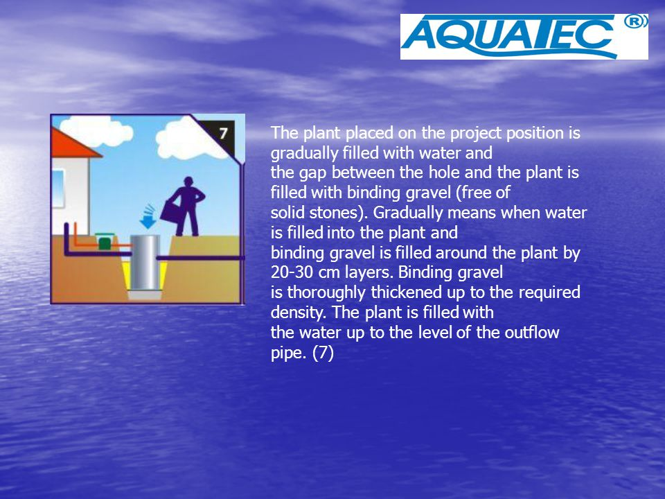 The plant placed on the project position is gradually filled with water and