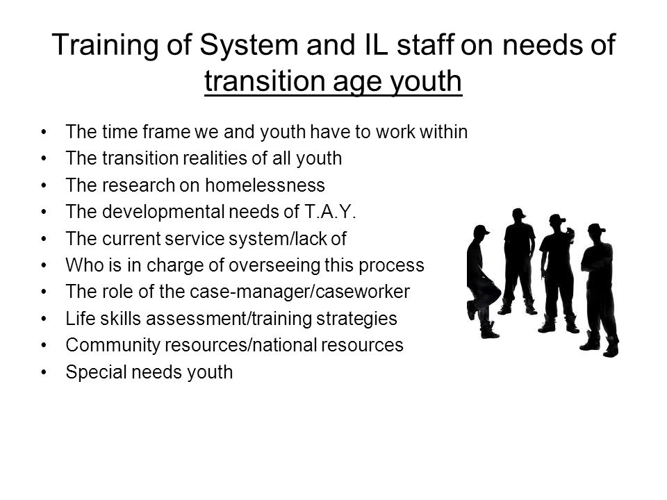 Training of System and IL staff on needs of transition age youth