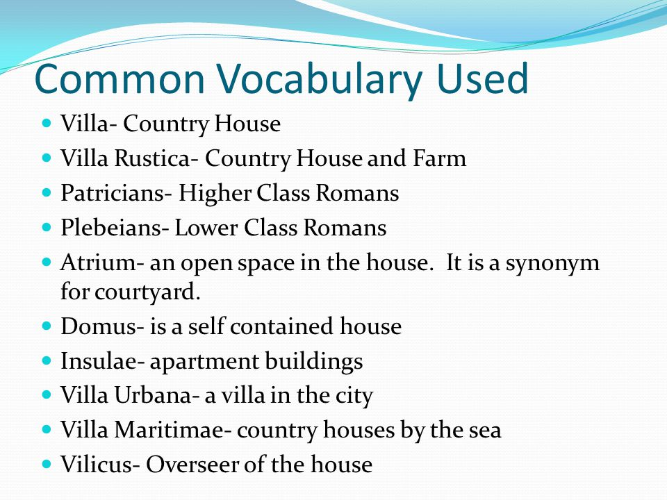 Common Vocabulary Used