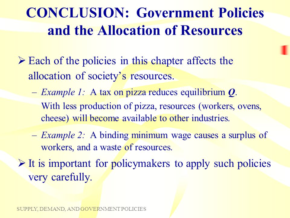 CONCLUSION: Government Policies and the Allocation of Resources