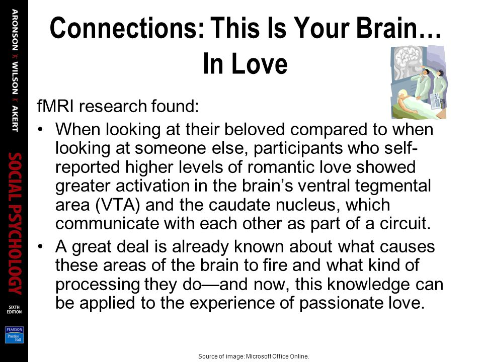 Connections: This Is Your Brain… In Love