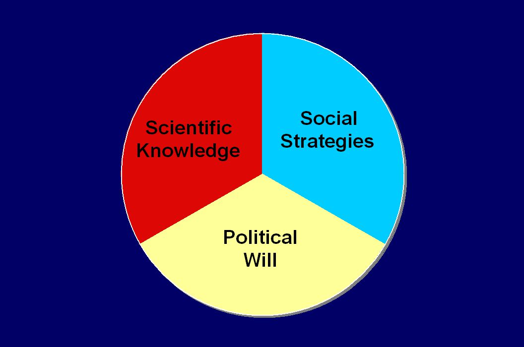 The Richmond Model suggests 3 elements that can work synergistically to effect public policy.