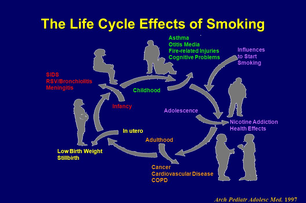 The Life Cycle Effects of Smoking