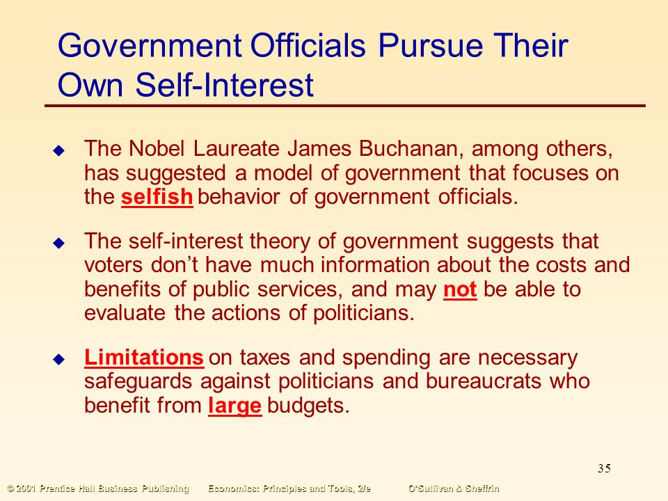Government Officials Pursue Their Own Self-Interest