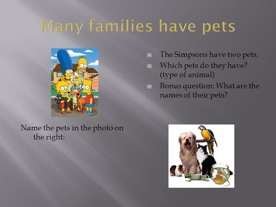 Many families have pets