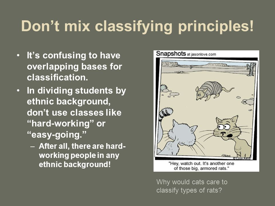 classification essay ppt video online  don t mix classifying principles