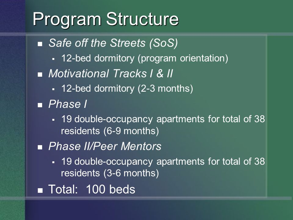 Program Structure Total: 100 beds Safe off the Streets (SoS)