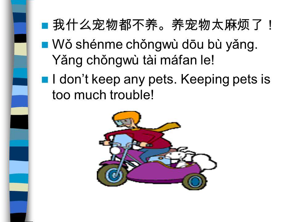 我什么宠物都不养。养宠物太麻烦了! Wǒ shénme chǒngwù dōu bù yǎng. Yǎng chǒngwù tài máfan le.