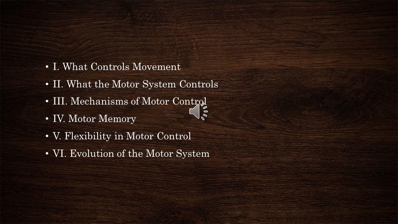 I. What Controls Movement
