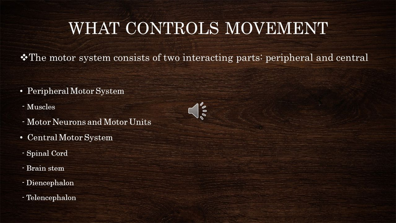 WHAT CONTROLS MOVEMENT