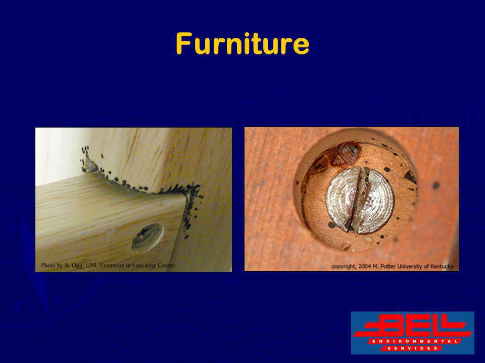 Furniture 19