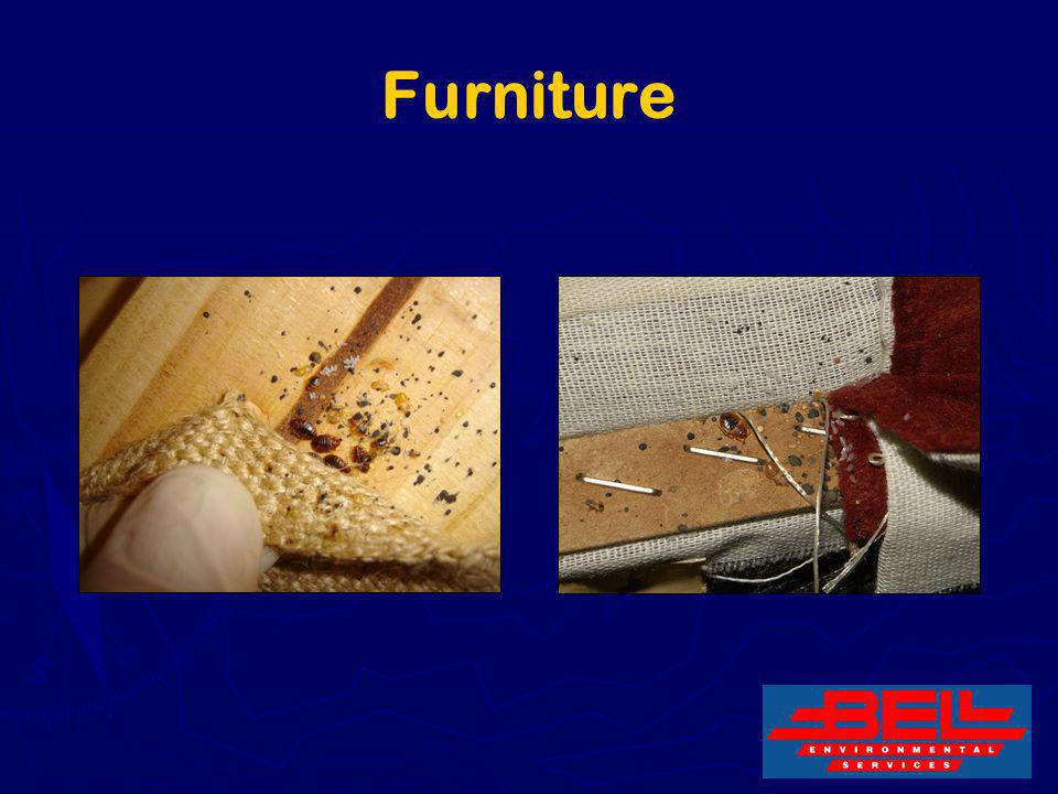 Furniture 20
