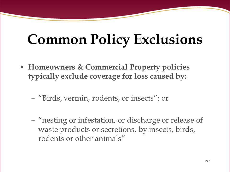 Common Policy Exclusions